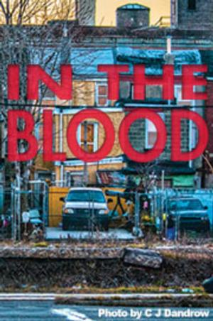 Theatre Horizon to Stage Suzan-Lori Parks' IN THE BLOOD, 4/16-5/9