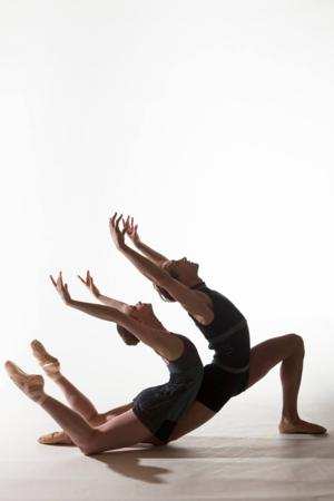 Minnesota Dance Theatre Welcomes New Board of Directors