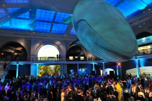 American Museum of Natural History Hosts 2014 Museum Dance, STAR STUDDED!, Tonight