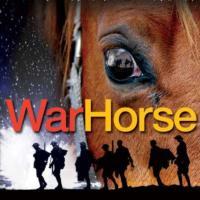 Birmingham-Hippodrome-Welcomes-National-Theatres-WAR-HORSE-20010101