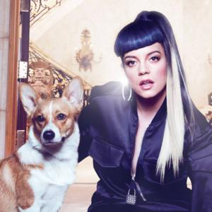 LILY ALLEN Announces North American 'Sheezus' Tour; Tix on Sale 5/15
