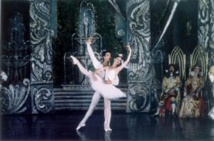 BWW Reviews: THE SLEEPING BEAUTY at The Brooklyn Center for the Performing Arts