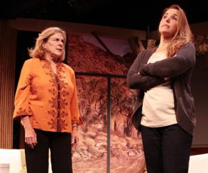 BWW Reviews: The Hampton Theatre Company's OTHER DESERT CITIES