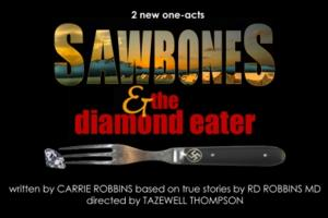 Tony Nominated Costume Designer Carrie Robbins Brings SAWBONES and THE DIAMOND EATER to HERE, Now thru 6/7