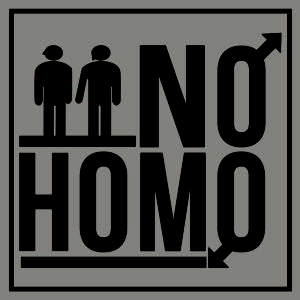BWW Reviews: NO HOMO Examines Whether You Have to Be Homosexual to be Really, Really Gay