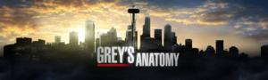 Ramirez, Pickens, Wilson and Chambers Set for Two More Years on GREY'S ANATOMY