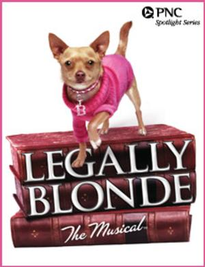 Pittsburgh CLO's LEGALLY BLONDE Opens Today