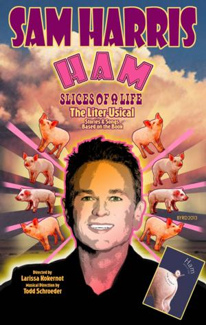 BWW Interviews: Tony Nominee, Sam Harris, Celebrates Release of New Book, HAM: SLICES OF A LIFE
