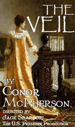 Conor McPherson's THE VEIL to Receive U.S. Premiere at Quotidian Theatre Company, 7/18-8/17