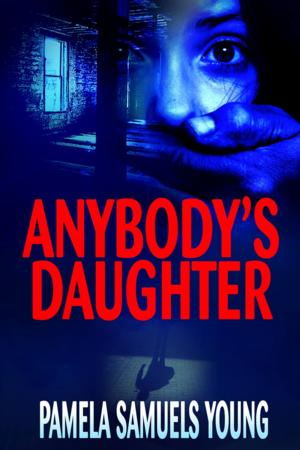 Towne Street Theatre Literary Series to Kick Off 1/18 with ANYBODY'S DAUGHTER