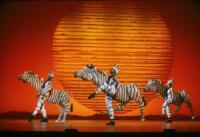 BWW-Reviews-THE-LION-KING-Roars-into-Austin-20010101