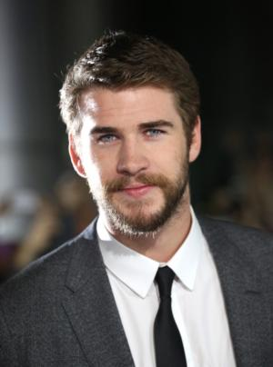 HUNGER GAMES Co-Stars Liam Hemsworth and Woody Harrelson Board BY WAY OF HELENA