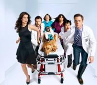 Scoop: ANIMAL PRACTICE on NBC - Wednesday, September 26, 2012