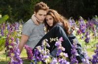 Fandango Announces Advance Ticket Sales for TWILIGHT: BREAKING DAWN PART 2, Beg. 10/1