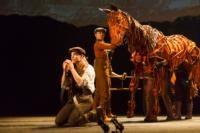 BWW Reviews: WAR HORSE at The Paramount Goes Beyond Theater and into Art