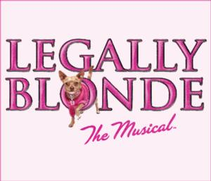 Haley Jane Schafer, Greg Foster & More to Star in Big Noise Theatre's LEGALLY BLONDE