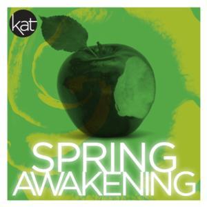 BWW Reviews: Kensington's SPRING AWAKENING Deserves 'A' For Effort