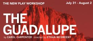 Ethan McSweeny to Chautauqua Theater Company's New Play Workshop Reading of THE GUADALUPE, Begin. Tonight