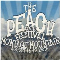 Allman Brothers Band Announce 2nd Annual Peach Music Festival, 8/15-8/18