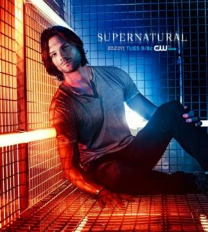 The CW Hits 5-Year High with SUPERNATURAL, THE ORIGINALS