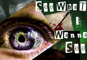Ignite Theatre to Present SEE WHAT I WANNA SEE, 2/14-3/9