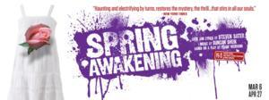 Cygnet Theatre to Host SPRING AWAKENING 'Tweet Night,' 4/11