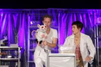 BWW Reviews: Annex's A MOUSE WHO KNOWS ME Should Go Back To the Lab