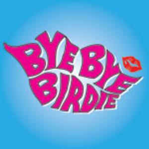 Desert Stages Theatre to Present BYE BYE BIRDIE, 4/11-5/4