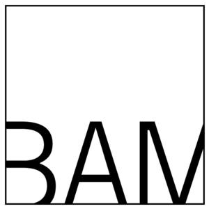 BAM 24 Hour Movie Marathon to Raise Funds for Education, 9/5