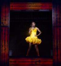 THE BODYGUARD Targeting Spring 2014 on Broadway