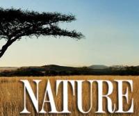 Paul-Giamatti-to-Narrate-NATURE-AN-ORIGINAL-DUCKMENTARY-on-PBS-1114-20121107