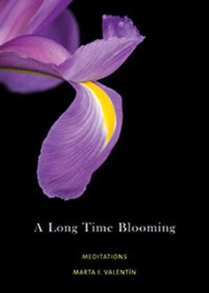The UUA Bookstore Presents A LONG TIME BLOOMING: MEDITATIONS by Marta I. Valentín