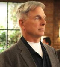 USA Invites Fans to Participate in NCIS Superfan Marathon