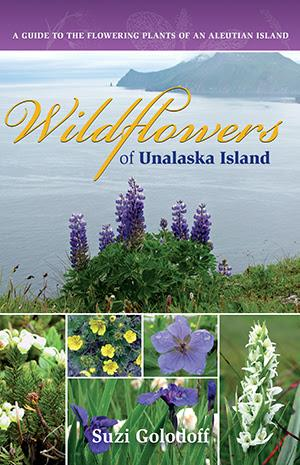 University of Alaska Press Releases WILDFLOWERS OF UNALASKA ISLAND by Suzi Golodoff