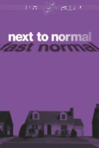 Next-To-Normal-feiert-deutschsprachige-Erstauffhrung-in-Frth-20010101