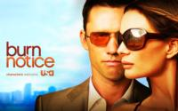 USA Officially Renews BURN NOTICE for a Seventh Season
