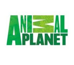 Animal Planet to Premiere New Series  BEAVER BROTHERS, 1/12