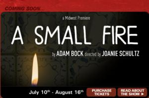 Joanie Schultz to Direct Adam Bock's A SMALL FIRE at Steep Theatre, Opening 7/10
