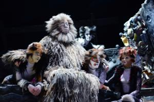 Official: CATS Set for Run at the London Palladium, Dec 2014; Tickets on Sale July 7