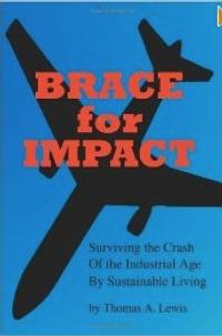 Thomas A. Lewis Releases IMPACT: SURVIVING THE CRASH OF THE INDUSTRIAL AGE