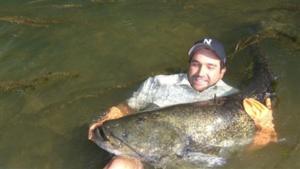 Nat Geo Wild to Premiere New Season of MONSTER FISH, 7/7