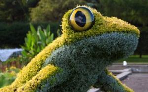 Atlanta Botanical Garden Showcases IMAGINARY WORLDS: A NEW KINGDOM OF GIANT PLANTS thru Oct 2014