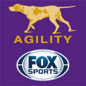 Louganis, Thompson & Hale to Call MASTERS AGILITY CHAMPIONSHIP AT WESTMINSTER on FOX Sports 1