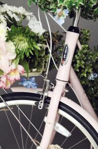 Free People and Schwinn Launch Freewheelin' Campaign
