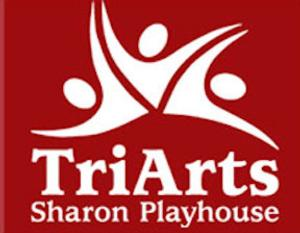 NINE WIVES to Run 7/24-27 at TriArts Sharon Playhouse