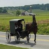 TLC Orders Second Season of Hit Series BREAKING AMISH