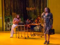 BWW Reviews: IN A YEAR WITH 13 MOONS Puzzles Audience -- and Critic