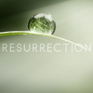 Series Debut of ABC's RESURRECTION Opens at #1