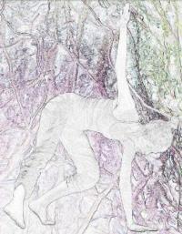 TAKE-ROOT-20010101