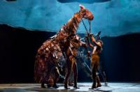 WAR-HORSE-to-Conclude-Broadway-Run-January-6-2013-20010101